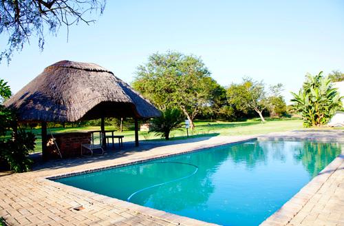Activities Swimming pool